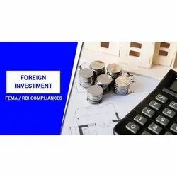 Consulting Firm Corporate Foreign Exchange Management Act Services