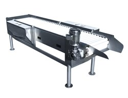 SS (Frame) Galvanized Iron Roller Conveyor, Roller Diameter: 5-10 Mm