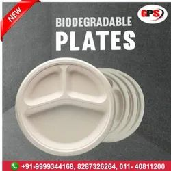 Biodegradable Paper Plates