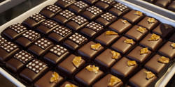 Offline FOUNDATION CHOCOLATE MAKING COURSE