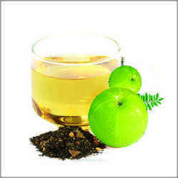 Immune Green Tea 500 Gm