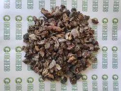 Awla Seedless Dry - Phyllanthus emblica -  Gooseberry