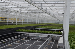 Greenhouse Automation System