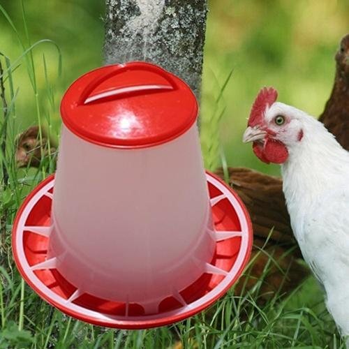 coops and decorpam pvc pictures progress chickens images chicken pinterest food included on roosters best s feeder coop
