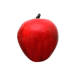 An Learning Half Cutted Apple Model