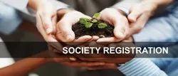 NGO Society Registration