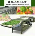Vegetable and Fruit Washer