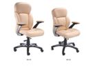 Stylish Executive Chair