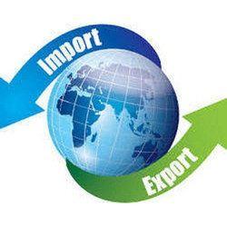 Import Export Code Number Service