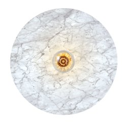 Venus Decorative Wall Ceiling Mounted LED Light