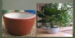 Round Cement Planter