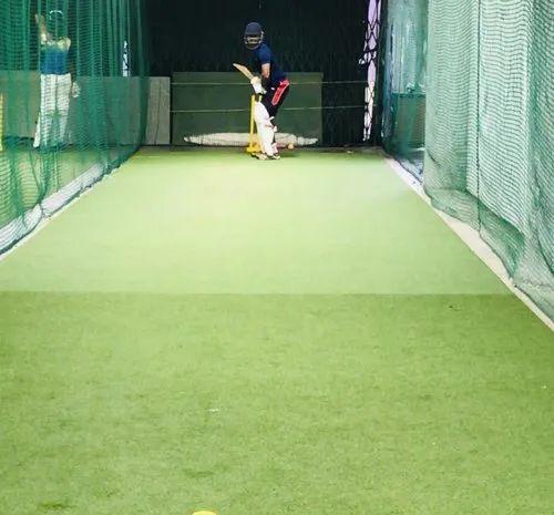Cricket Pitch Grass
