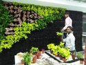 Verical Garden Irrigation System