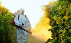 Hurricane Spraying Service