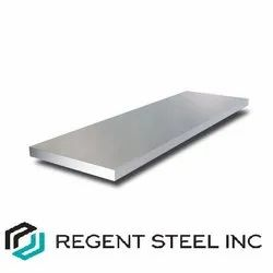Stainless Steel 316 Flat