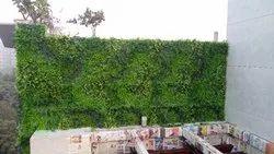 Artificial Bio Wall