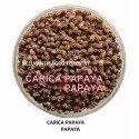 Carica Papaya Seed