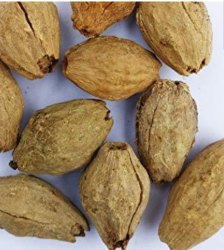 Melia Dubia Plant Seed, Packaging Type: Bag