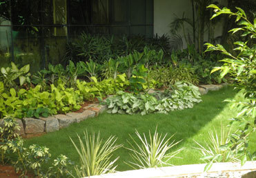 Service Provider Of Landscaping Services Maintenance Of