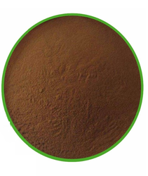 Fresh Bulk Cassia Tora Powder