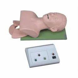 Electronic Trachea Intubation Training Model
