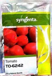 Tomato Seeds 6242 Syngenta
