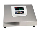 SS Platform Weighing Scale