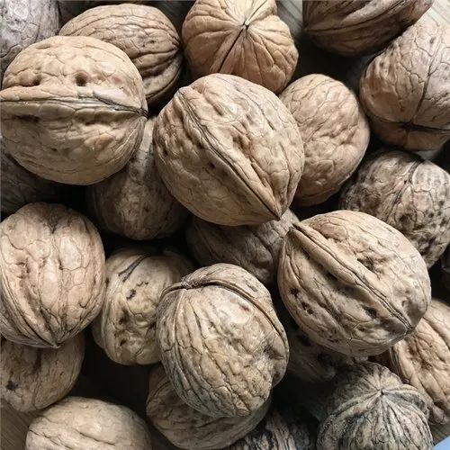 Walnut, Packaging Type: Vacuum Bag