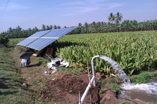 Solar Irrigation System At Rs 127047 Unit सोलर इरीगेशन
