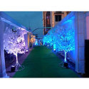 Light Decoration Service, Delhi