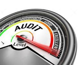 Process Audit And GAP Analysis