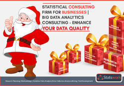 Statistical Consulting For Businesses