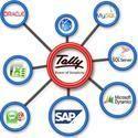 Tally Data Integration Service