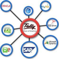 Tally Data Integration Service