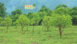 Rs:1700/- Per Square Yard Farm House Plots for sale Invest With us get more returns