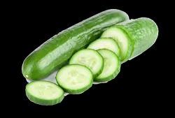Cucumis Sativus Extract (Cucumber / Kakdi), Packaging Size: 25 Kg