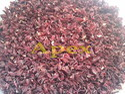 Died Hibiscus Flower