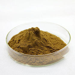 Olive Leaf Extract, Packaging Size: 1-25 Kg