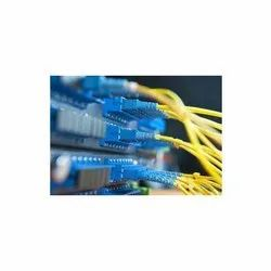 Voice Cabling Services