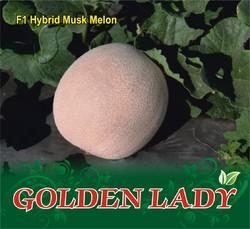 Golden Lady F-1 Hybrid Muskmelon Seed