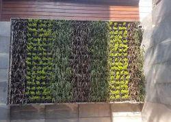 Vertical Garden Landscaping Service