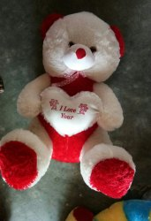 Girl Red and White Smart Teddy Bear