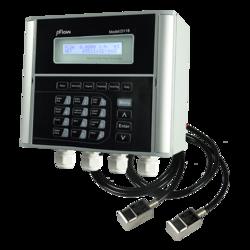 Time Transit Ultrasonic Flow Meter D118