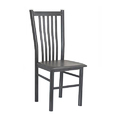 Black Metal Sps-309 Dining Chair