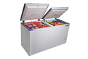 CHF 400A Blue Star Deep Freezer
