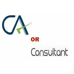 Chartered Accountant Consultant