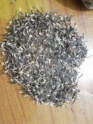 Hybrid Marigold Seeds, Packaging Type: Packet, Packaging Size: 100 Grams