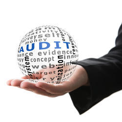 One-Time E-Commerce Stock Audit Services