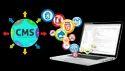CMS Web Development Services