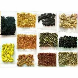 Organic Vegetable Seeds, Packaging Type: Packet, 150 Gm Each